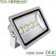 大功率LED投光灯100-250W